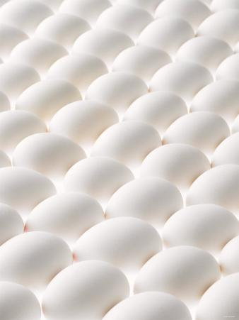 White Eggs, Lying on Their Sides, Filling the Picture