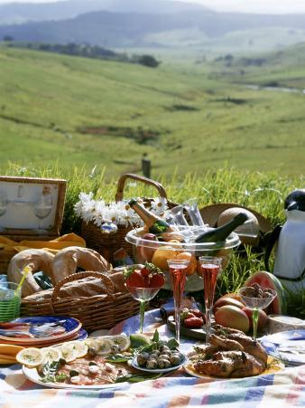 Picnic with Roast Quails and Salmon
