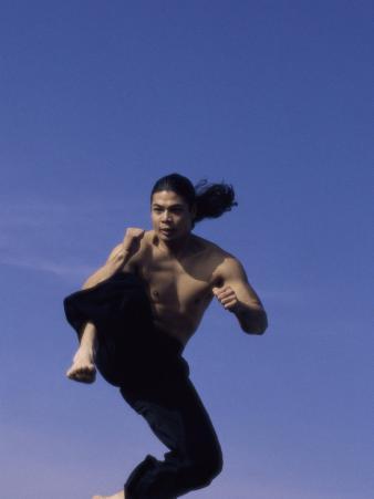 Airborne Martial Artist
