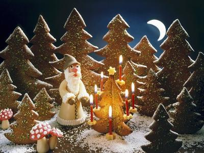 A Christmas Forest Scene with Father Christmas