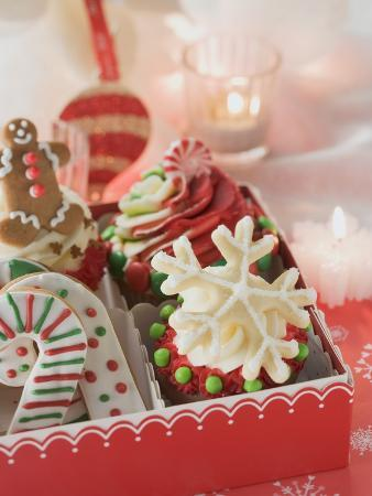 Cupcakes and Christmas Biscuits to Give as a Gift