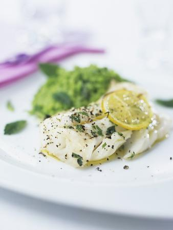 Fish Fillet with Herbs