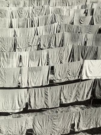 Laundry Hung in the Sun, the Sheets are Arranged in Regular Rows