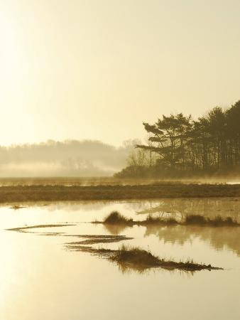 Quiet Moments Overlooking the Marsh at Dawn, Scarborough,Maine