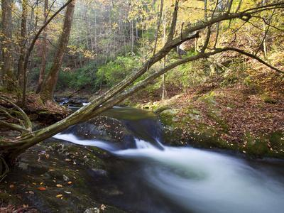 The Little River, Great Smoky Mountains National Park, Tn