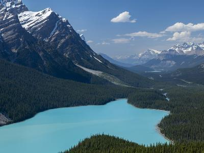 Bright Turquoise Colored Peyto Lake from the Bow Summit in Banff National Park, Canada.