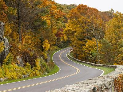Autumn in the Shenandoah National Park, Virginia