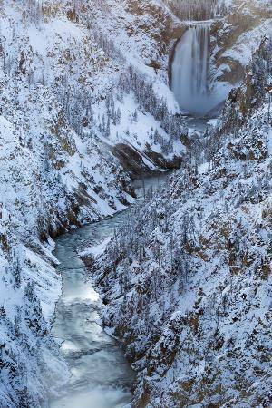 Lower Falls and the Grand Canyon of the Yellowstone River in Yellowstone National Park, Wyoming