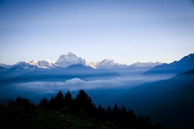 Dhaulagiri, an 8000 Meter Peak in the Morning Sun, Poon Hill, Annapurna Circuit, Ghorepani, Nepal