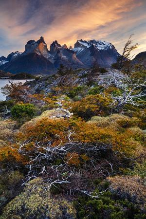 Magallanes Region, Torres Del Paine National Park, Lago Pehoe, Chile