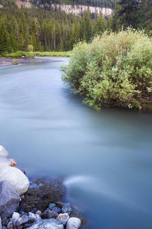 Soda Butte Creek Rushes Through Silvergate, Montana