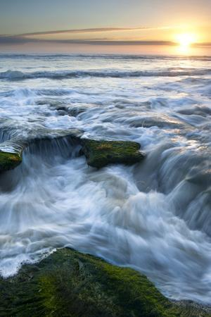 Marineland, Florida: Waves Crashing over the Algae Covered Rocks