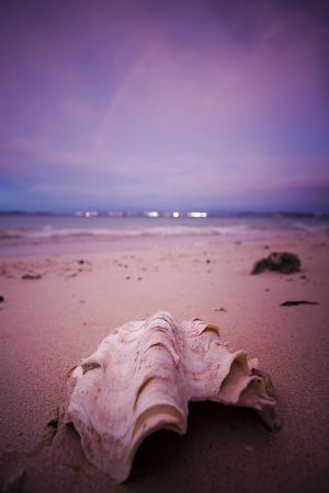 A Clam Shell Sits on a Beach While a Rainbow Appears on the Island of Mamutik, Borneo, Malaysia