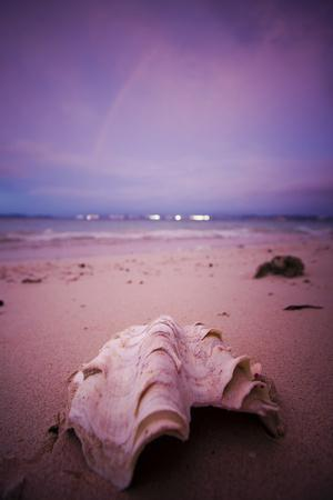 A Clam Shell Sits on a Beach While a Rainbow Appears on the Island of Mamutik, Borneo, Malaysia