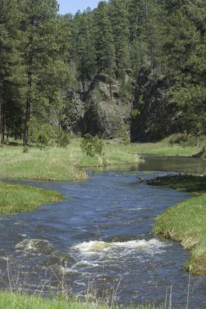 French Creek, Where Gold Was Discovered in the Black Hills, South Dakota