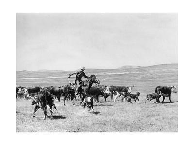 Cowboy in den USA, 1928