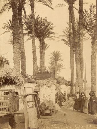 Arabic Village Along the Nile (Egypt)
