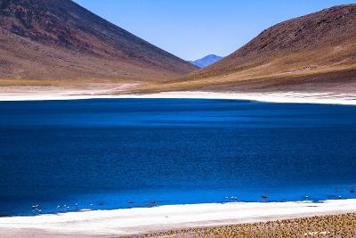 Atacama Desert, Chile and Bolivia