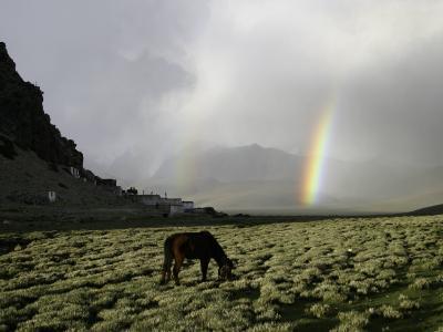 Horse with Rainbow, Tibet