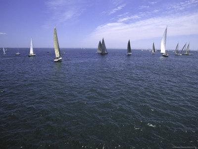 Sailboats in Ocean, Ticonderoga Race