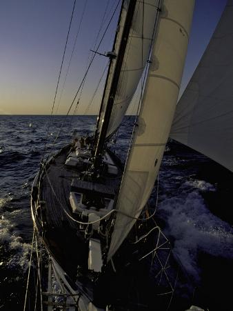 Sailing at Sunset, Ticonderoga Race