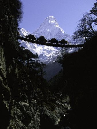 Bridge in Ama Dablam, Nepal