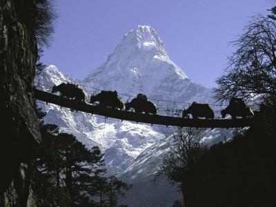 Bridge on Ama Dablam, Nepal