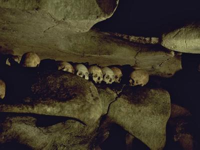 Lines of Skulls in Cave, Indonesia