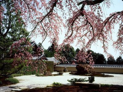 Rock Garden, Shoho-Ji Temple, Japan