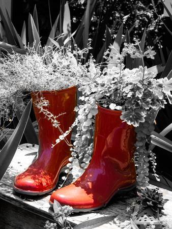 Rain Boots Border