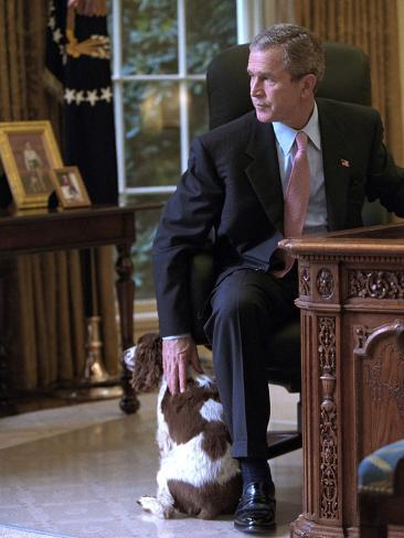 President George W Bush Pets Spot In The Oval Office Of The White