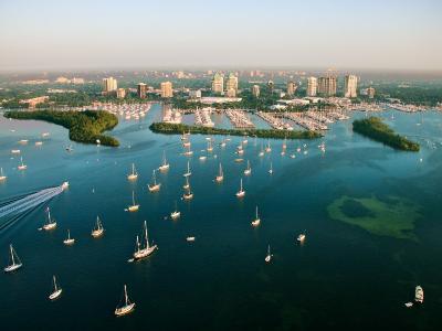 Grandiose Aerial View of Miami, Florida