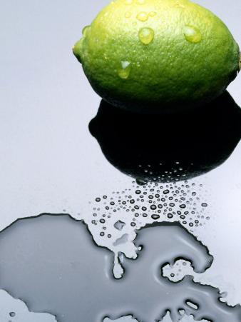 Juicy Lime in Puddle of Water