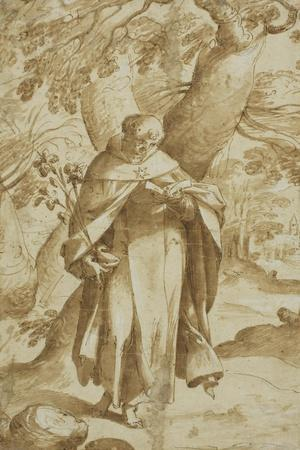 Saint Dominic Reading, C.1575