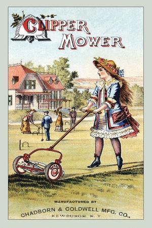 Clipper Mower