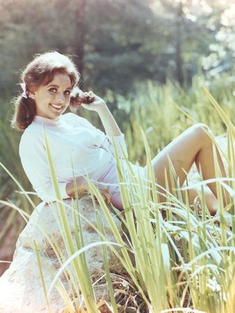 Dawn Wells Posed in White Sweater