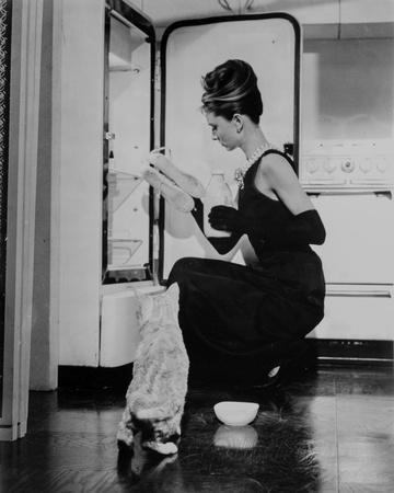Audrey Hepburn holding Ballet Shoes and Feeding the Cat