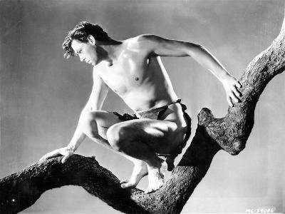 Johnny Weissmuller sitting on a Tree Branch in a Movie Scene