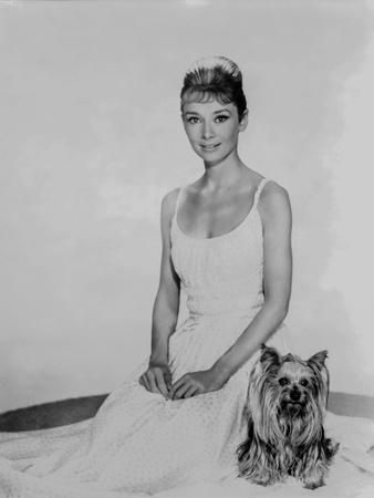 Audrey Hepburn in a Summer Dress with her Dog