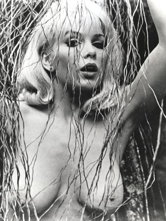 Stella Stevens Nude Portrait in Black and White