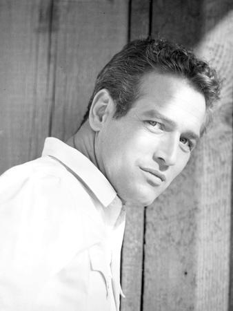 Paul Newman Posed in Polo Black and White