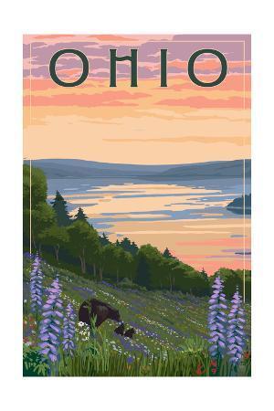 Ohio - Lake and Bear Family