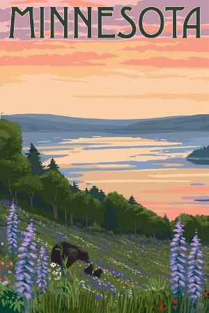 Minnesota - Lake and Bear Family
