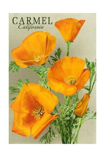 Carmel California State Flower Poppy Flowers Posters By Lantern