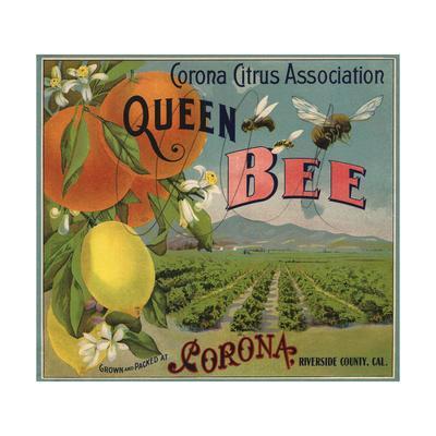 Queen Bee Brand - Corona, California - Citrus Crate Label
