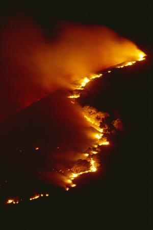 Mediterranean Forest Fire at Night, Spain