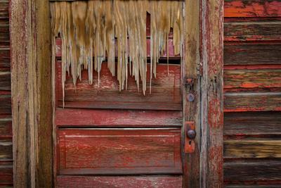 Weathered Door III