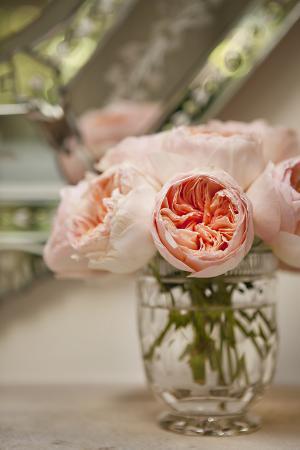 Bouquet of Peonies I