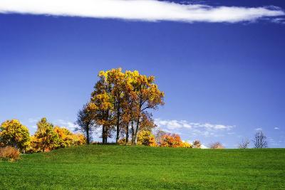 Meadows of Dan I
