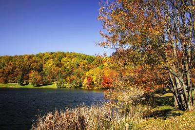 Highland Autumn I